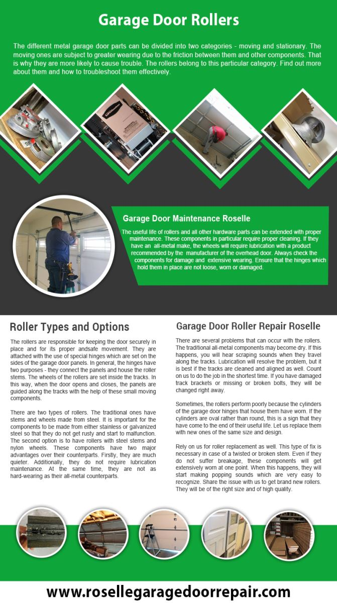 Garage Door Repair Roselle Infographic